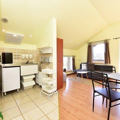 Apartamentų virtuvė